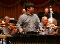 Schwandtner Percussion concerto