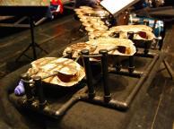 Percussionist